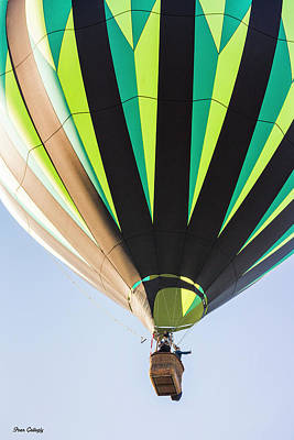 Photograph - Up Up And Away by Fran Gallogly