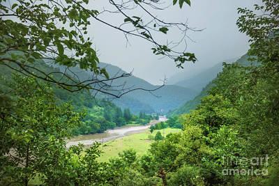 Pine Tree Mixed Media - Valley by Svetlana Sewell