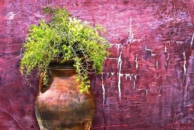 Its A Piece Of Cake - Vase by Tom Kiebzak