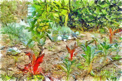 Digital Art - Vegetable Garden by Giuseppe Cocco