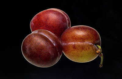 Photograph - Victoria Plums by David French