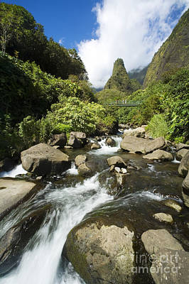 Photograph - View Of Iao Needle by Ron Dahlquist - Printscapes