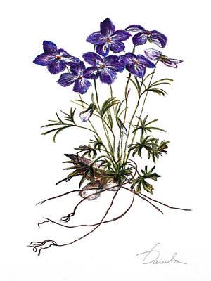 Violets Art Print by Danuta Bennett