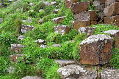 Photograph - Volcanic Rock Formations At The Giants Causeway In Ireland by Vizual Studio