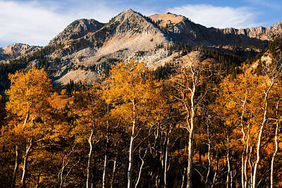 Photograph - Wasatch Mountains In Autumn by Utah Images