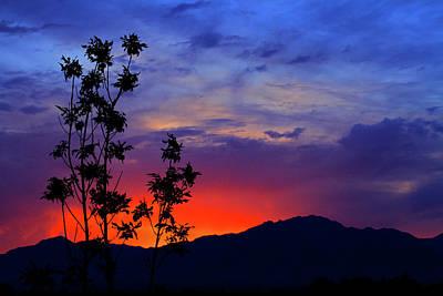 Photograph - Wasatch Sunrise by Paul Marto