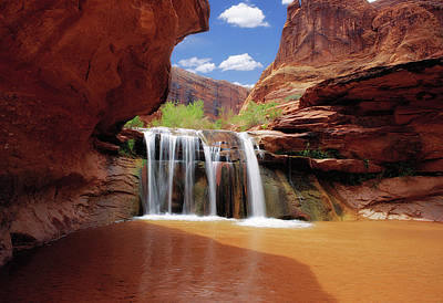 Photograph - Waterfall In Coyote Gulch, Utah by Utah Images