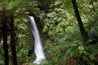 Photograph - Waterfall, New Zealand by Les Cunliffe