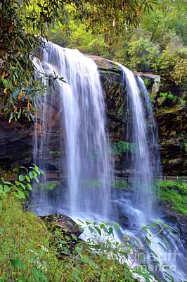 Photograph - Waterfall by Savannah Gibbs