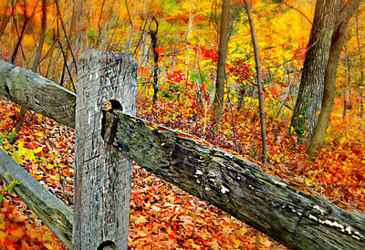 Photograph - Welcome Autumn by Diana Angstadt