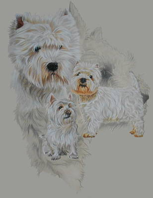 Drawing - West Highland White Terrier by Barbara Keith