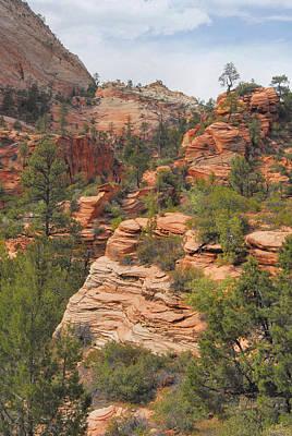 West Zion Landscape Art Print