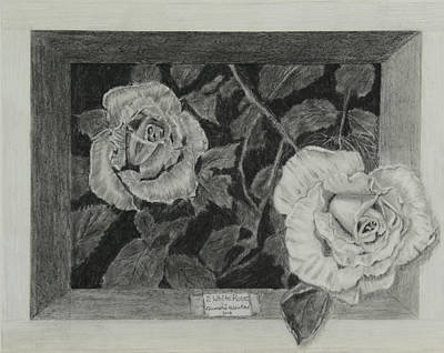 Drawing - 2 White Roses by Quwatha Valentine