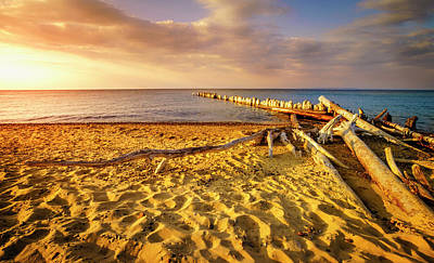 Photograph - Whitefish Point, Michigan by Alexey Stiop