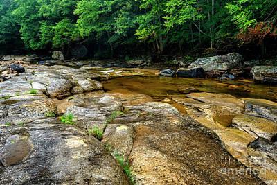 Photograph - Williams River Summer Rain by Thomas R Fletcher