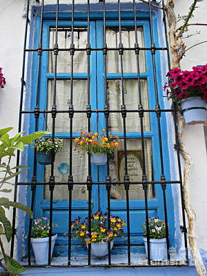 Photograph - Window In Lanjaron by Chani Demuijlder