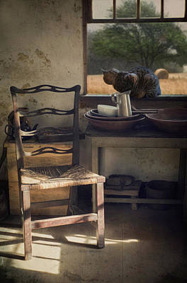 Photograph - Window Seat by Robin-Lee Vieira