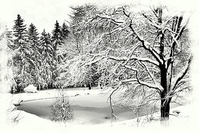 Photograph - Winter Bliss by Marcia Lee Jones