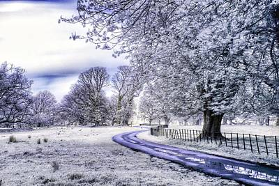 Landscapes Digital Art - Winter by Maye Loeser