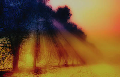 Photograph - Winter Rays by Pixabay