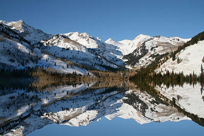Photograph - Winter Reflections by Mark Smith