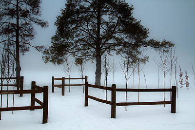 Photograph - Winter Trees by Utah Images
