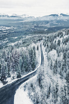 Royalty-Free and Rights-Managed Images - Winters Way by Evelina Kremsdorf