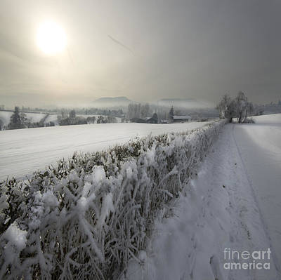 Wintery Landscape Art Print