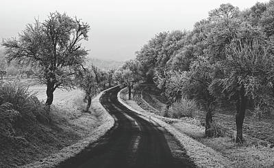 Photograph - Wintry Country Road by Unsplash