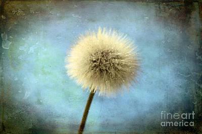 Dandelions Digital Art - Wish Of A Lifetime by Krissy Katsimbras