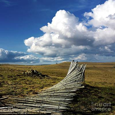 Pasture Scenes Photograph - Wooden Posts by Bernard Jaubert