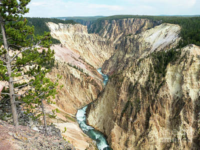 Photograph - Yellowstone Canyon by Rod Jones