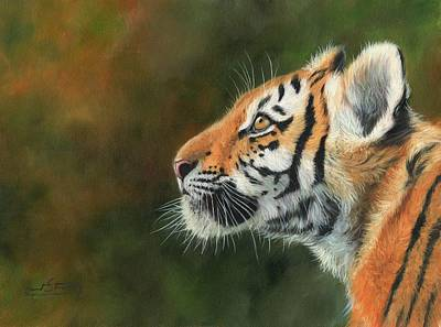 Print featuring the painting Young Amur Tiger  by David Stribbling