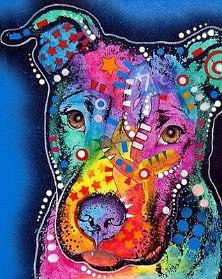 Pit Bull Mixed Media - Young Bull by Dean Russo
