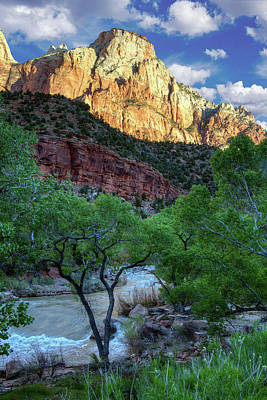 Slickrock Photograph - Zion National Park by Utah Images
