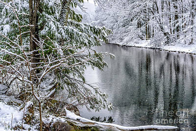 Art Print featuring the photograph Winter Along Cranberry River by Thomas R Fletcher