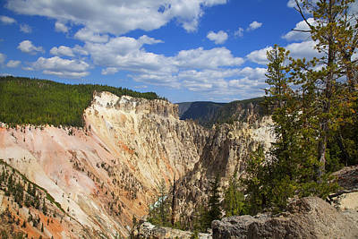 Photograph - Yellowstone National Park by Mark Smith