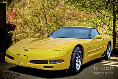 Photo Royalty Free Images - 2003 Corvette Z06 50th Anniversary B Royalty-Free Image by Dave Koontz