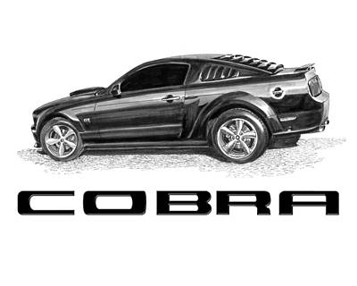Painting - 2009 Mustang Cobra 500 Kr by Jack Pumphrey