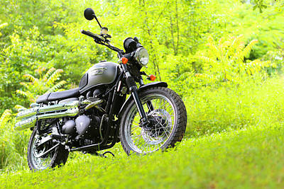 Photograph - 2013 Triumph Scrambler by Keith May