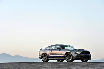 Photograph - 2014 Shelby Gt500 by Drew Phillips
