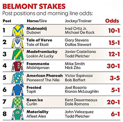 Digital Art - 2015 Belmont Stakes Entries by  Newwwman