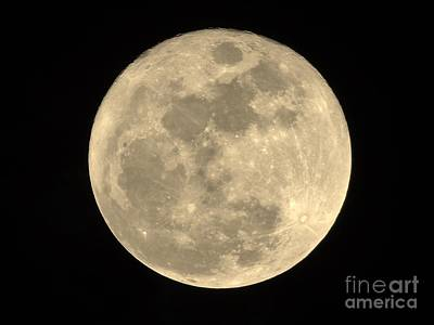 Photograph - 2015 Christmas Full Moon by D Hackett