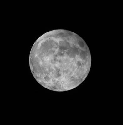 Photograph - 2015 Super Moon by Shane Bechler