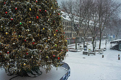Photograph - 2016 Fanueil Hall Christmas Tree Boston Covered In Snow Boston Mass by Toby McGuire