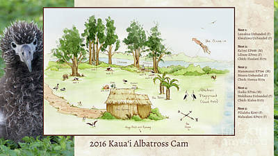 2016 Kauai Albatross Cam Map Art Print by Elizabeth Smith