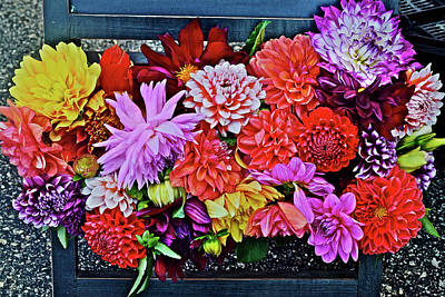 Photograph - 2016 Monona Farmer's Market Dahlias Display by Janis Nussbaum Senungetuk