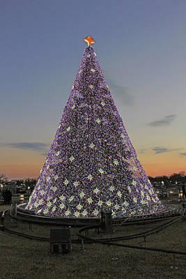Photograph - 2016 National Christmas Tree by Cora Wandel