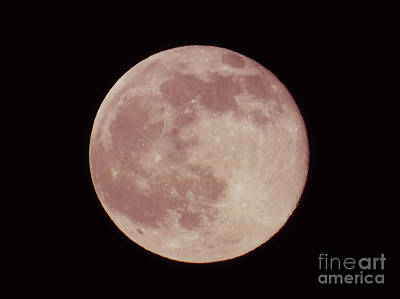 2016 Summer Solstice Strawberry Moon  Art Print by D Hackett