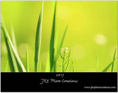 Photograph - 2017 Classic Calendar Preview - Cover by Joni Eskridge